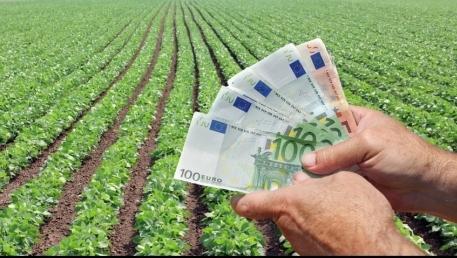 După 15 iunie, plata unică pe suprafaţă mai poate fi solicitată cu penalizări. Aproape 22.000 de fermieri au depus cererile