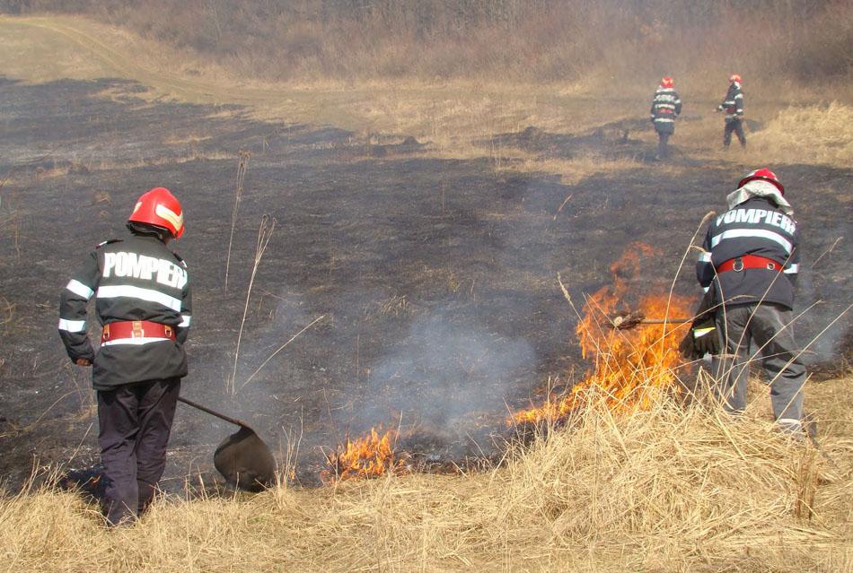 APIA Olt: Este interzisă arderea miriştilor. Ce sancţiuni pot fi aplicate fermierilor